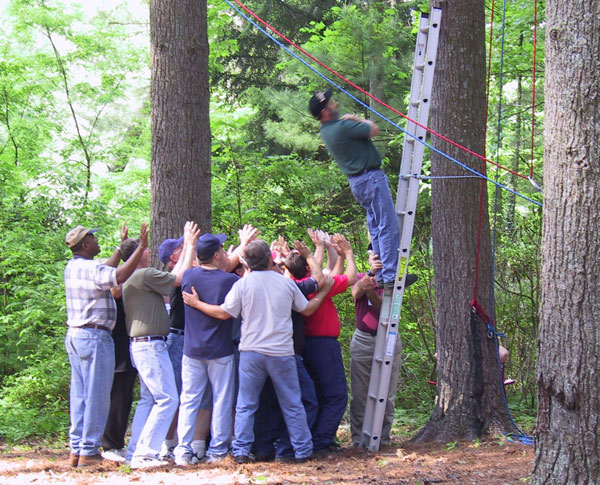 Low Ropes Course Team Building Programs